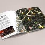 minuteman's Portfolio - Printdesign für das Hotel Almrausch in Bad Reichenhall - Hochglanz Broschüre Seite 8 Weihnachten