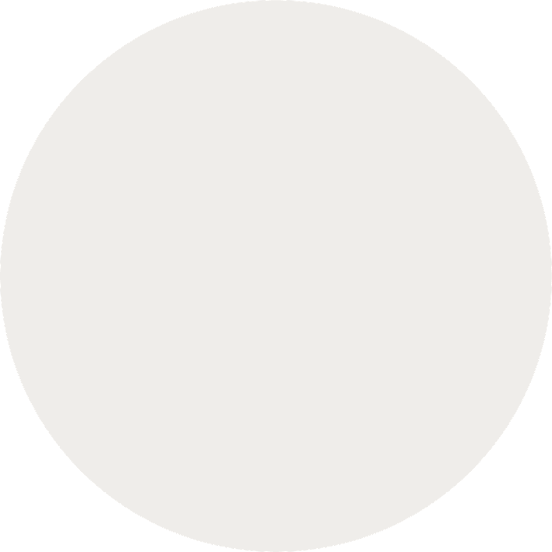 minuteman's Portfolio - Webdesign Relaunch - Rebranding Farbkonzept - Baumwolle